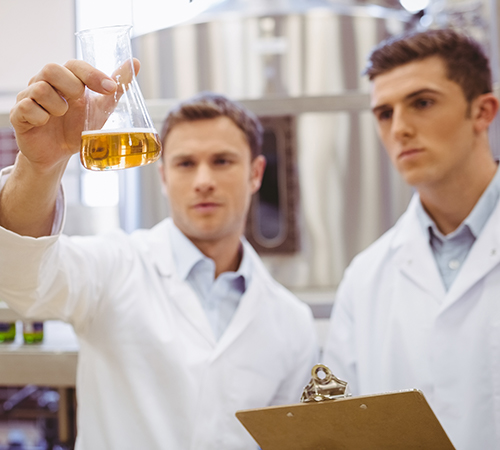 Scientists looking at an Erlenmeyer