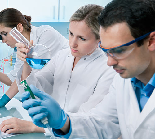 A group of scientists working together in a lab